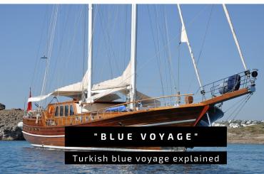 Blue Voyage explained