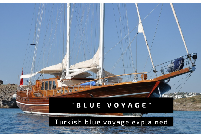 Blue Voyage explained